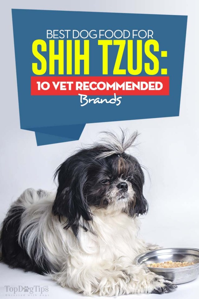 Top Rated Best Dog Food for Shih Tzus