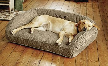 Deep Dish Bed With Quilted Sleep Surface by Orvis