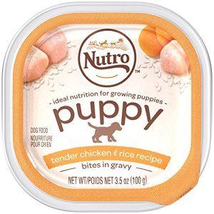 Nutro PUPPY Wholesome Canned Food