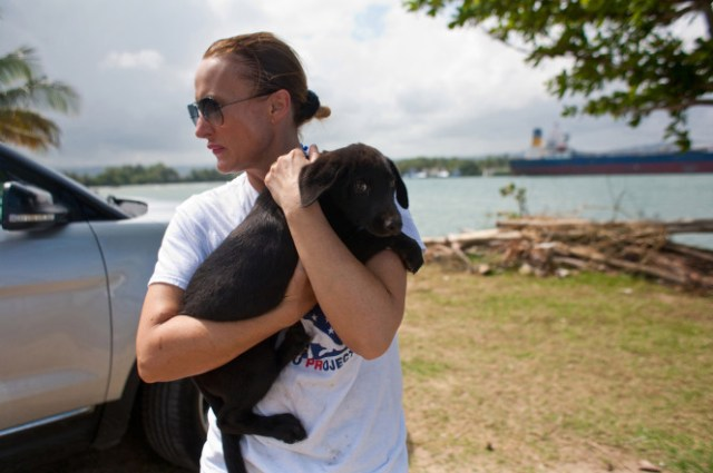 Christina rescues yet another puppy from the Dead Dog Beach.