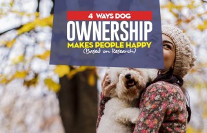 How Dog Ownership Makes People Happy
