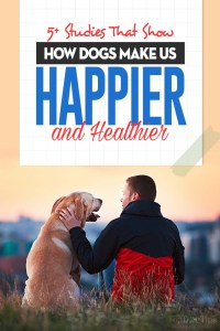 The Studies That Show How Dogs Make Us Happier and Healthier