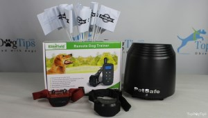 Rechargeable In-Ground System for Dogs