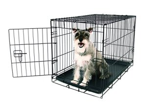 Carlson Pet Products Secure and Compact Single Door Metal Dog Crate