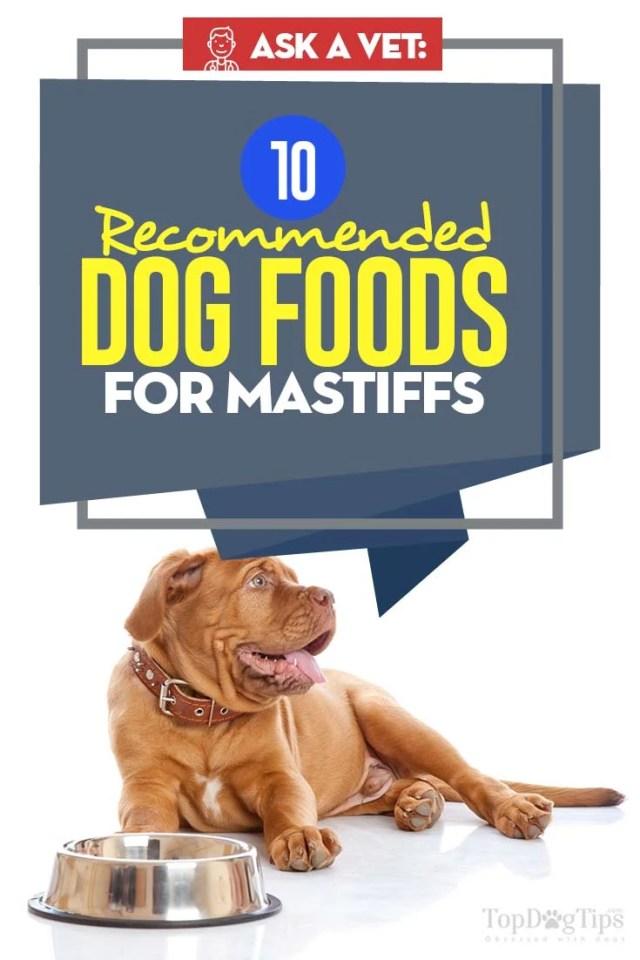 Best Dog Food for Mastiffs - Vet Recommended Brands
