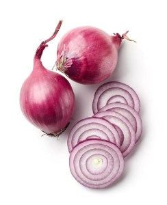 Can dogs have onions