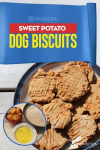 Delicious Sweet Potato Dog Biscuits Recipe