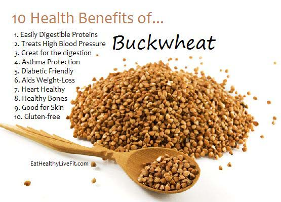 Is Buckwheat Good for Dogs