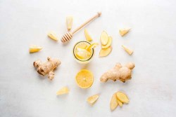 Is ginger bad for dogs