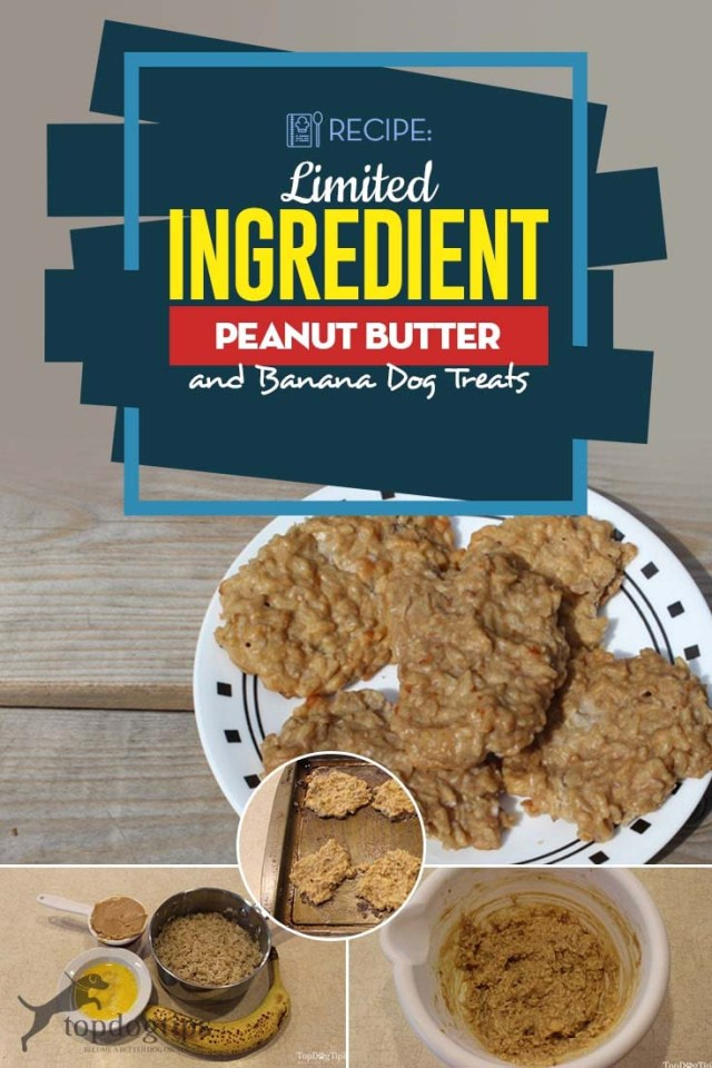 Quick Limited Ingredient Peanut Butter and Banana Dog Treats Recipe