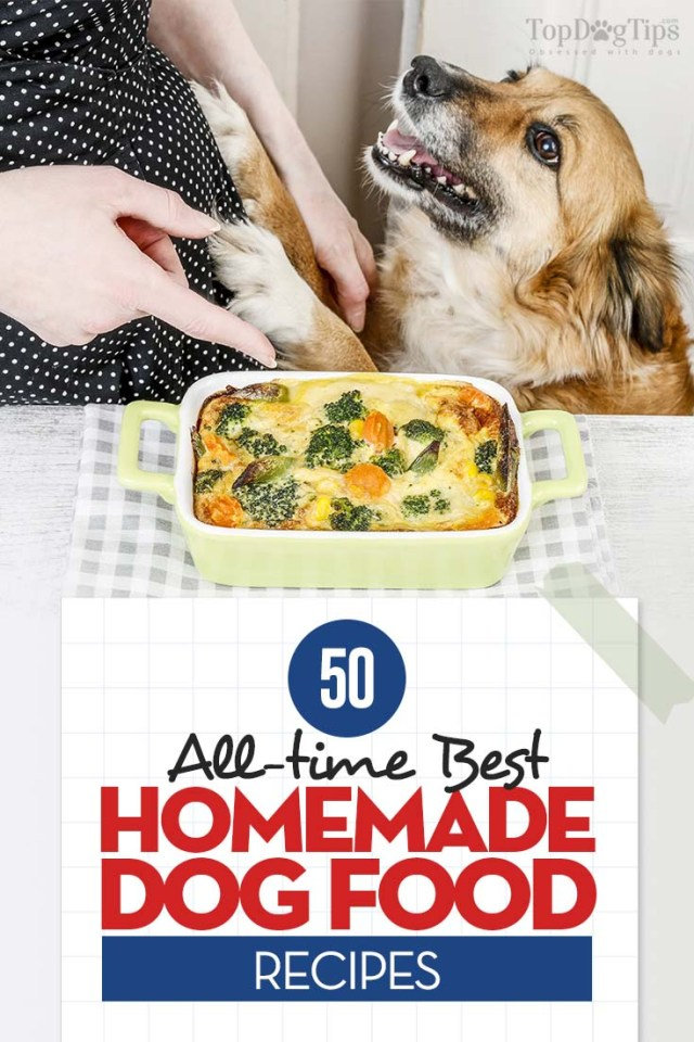 Top 50 Best Homemade Dog Food Recipes