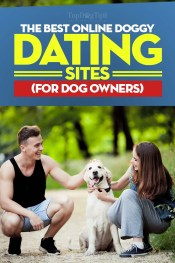 Best Online Dog Dating Site Choices for Dog Owners