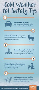 Cold Weather Dog Health Tips