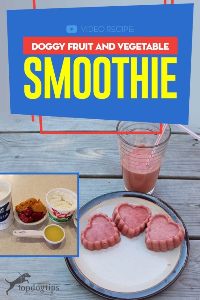Simple to Make Doggy Fruit and Vegetable Smoothie