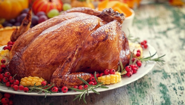 What Not to Feed Your Dogs on Thanksgiving