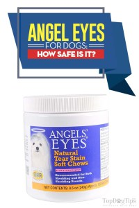 Angel Eyes for Dogs Review
