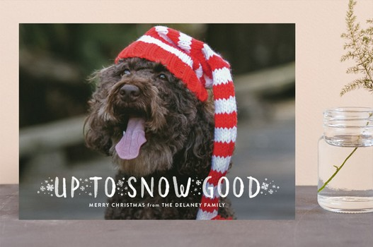 Up To Snow Good Dog Hat Holiday Card