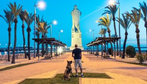 Dog Holiday Resort in Spain