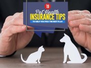 Pet Health Insurance Facts and Tips