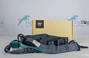 Hands-Free Dog Walking Supplies Giveaway