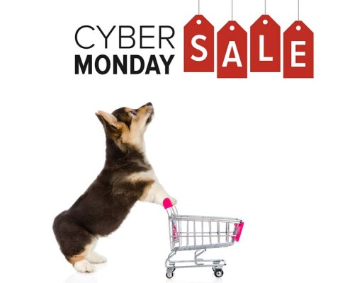 The Best Cyber Monday Deals on Dog Supplies