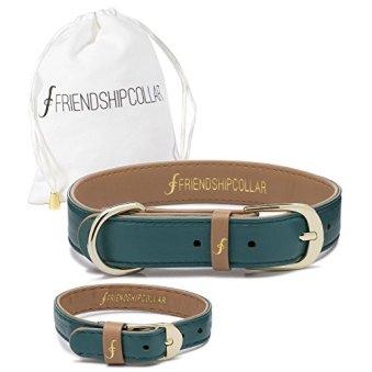 Friendship Collar Dog Collar and Matching Bracelet Set