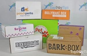 Best Dog Subscription Box 2020