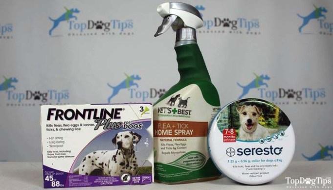 Best Flea Drops for Dogs - Most Effective Brands
