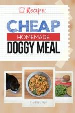 Cheap Homemade Dog Food Meal Recipe