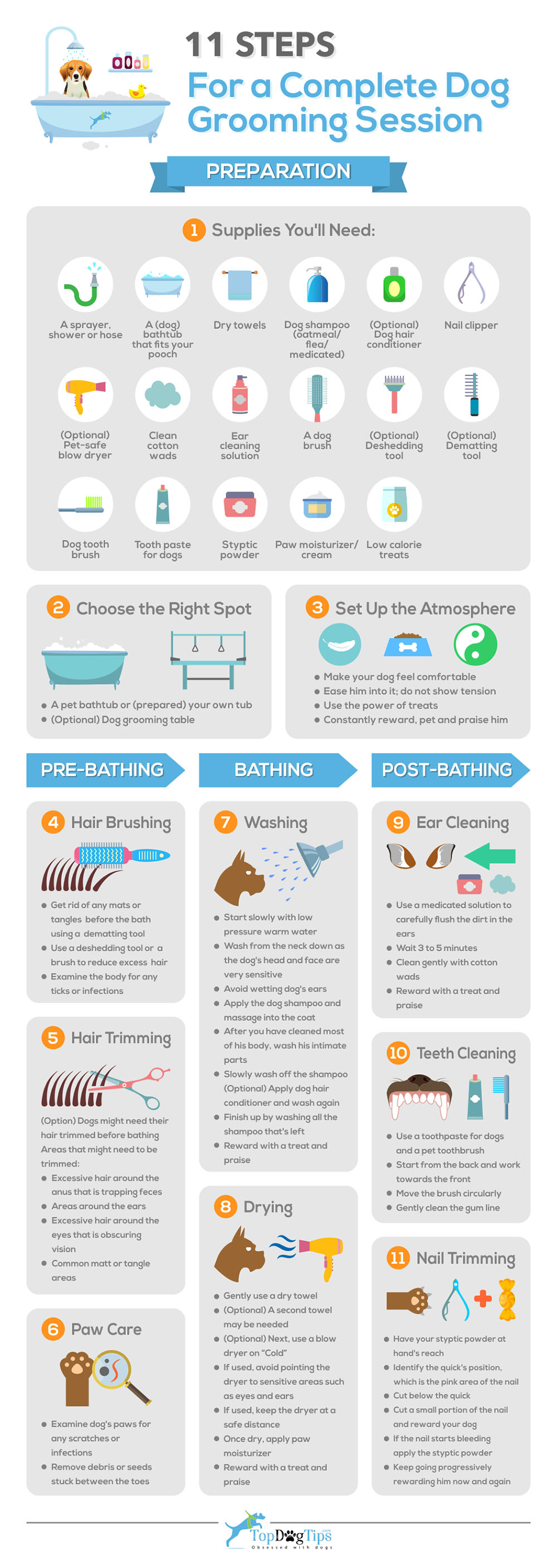 11 Quick Steps For A Complete Dog Grooming Session