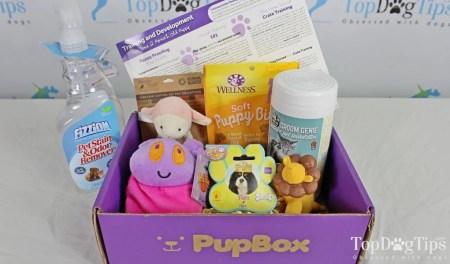 PupBox Monthly Dog Box