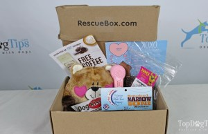 The best dog subscription box