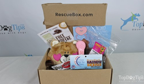 Rescue Box dog subscription box