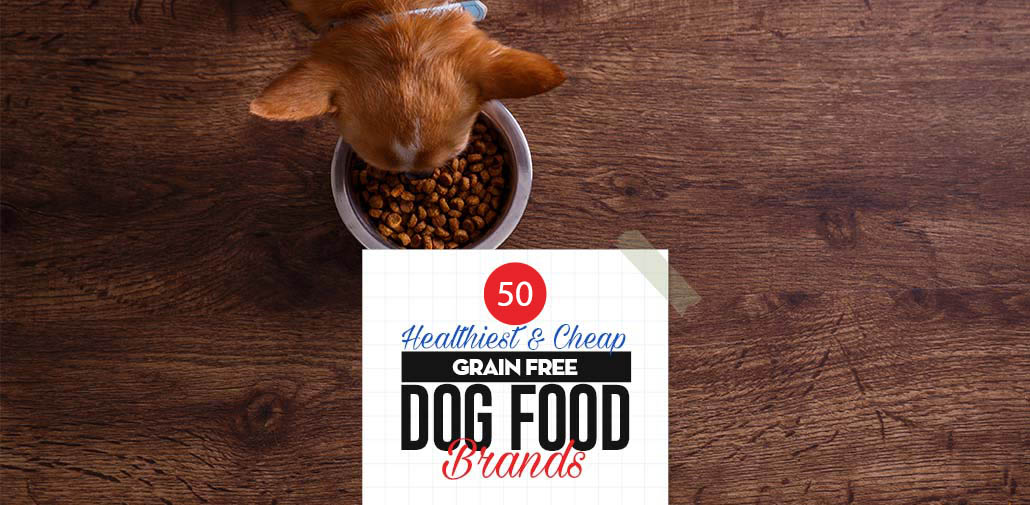 Top 50 Cheap Best Grain Free Dog Food Brands of All Time