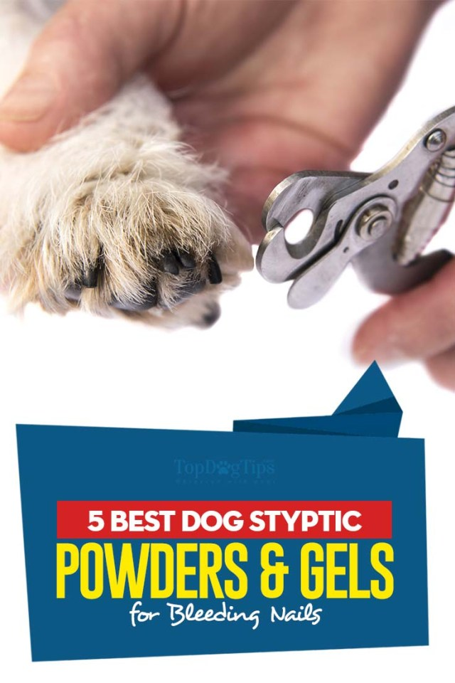 Top Rated Best Dog Styptic Powders