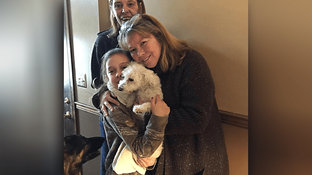Small Dog Gets Taken by Raptor – and Survives