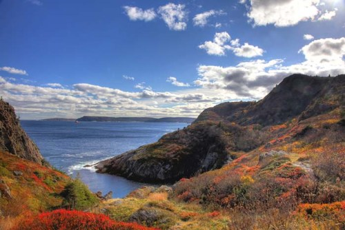 Newfoundland - the home of original Labrador Retrievers