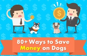 80 Ways to Save Money on Dogs