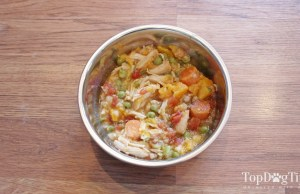 Homemade Dog Food for Puppies