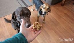 Homemade Dog Treats with Baby Food
