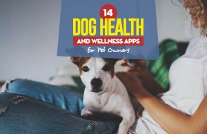 14 Dog Health and Wellness Apps for Pet Owners
