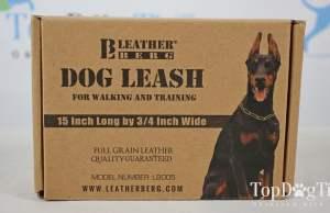 Leatherberg Dog Traffic Lead
