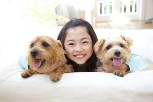 Norfolk Terrier for Kids