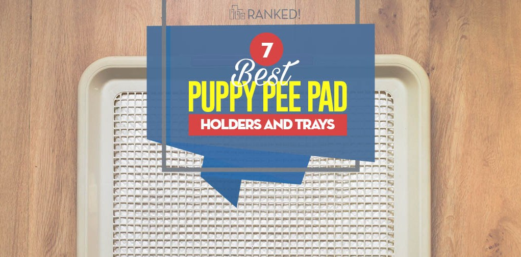 Top 7 Best Puppy Pee Pad Holders, Trays and Litter Boxes