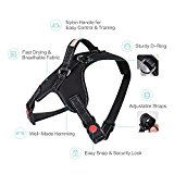 Safety Lock No Pull Pet Harness