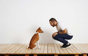 Dog-Speak Helps Owners Build Relationships With Their Dogs