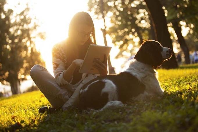 Dogs for Students - 6 Things You Must Consider