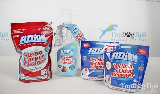 Fizzion Pet Stain and Odor Remover