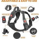 kindacoool harness