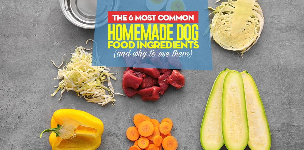 Most Common Homemade Dog Food Ingredients